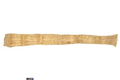 Pubic belt
