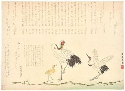 Der Farbholzschnitt zeigt einen großen stehenden Storch und ein gelbes Junges; rechts davon ein auffliegender Storch. Über den Tieren Schriftext.