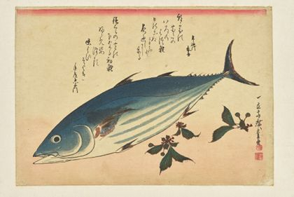 Utagawa Hiroshige Fish Print: Bonito and Cherries from the series »A Shoal of Fishes«
