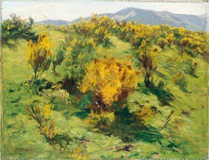 Wilhelm Gustav Friedrich Hasemann Blooming Gorse